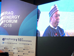 HE Mohammad Sanusi Barkindo, OPEC Secretary General, participated in a plenary session entitled 'Energy, Economy and Geopolitics'