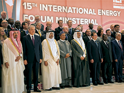 Delegates at the IEF15