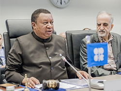 HE Mohammad Sanusi Barkindo, OPEC Secretary General, delivers his remarks at the meeting